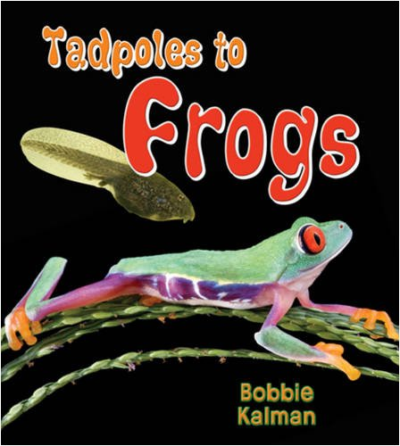 Tadpoles to Frogs (It's Fun to Learn about Baby Animals (Paperback))