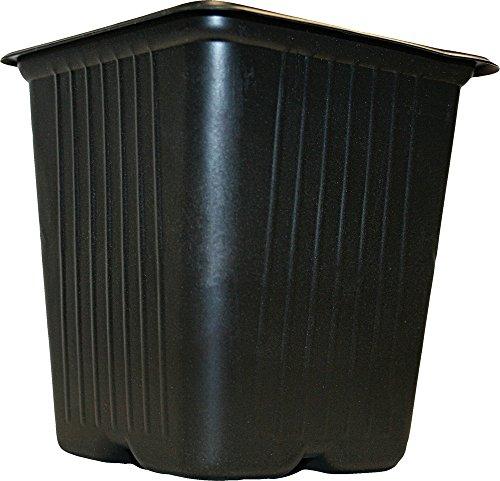 Vilmorin 3990612 Pack de 5 Godets Carrés Plastique 11 cm