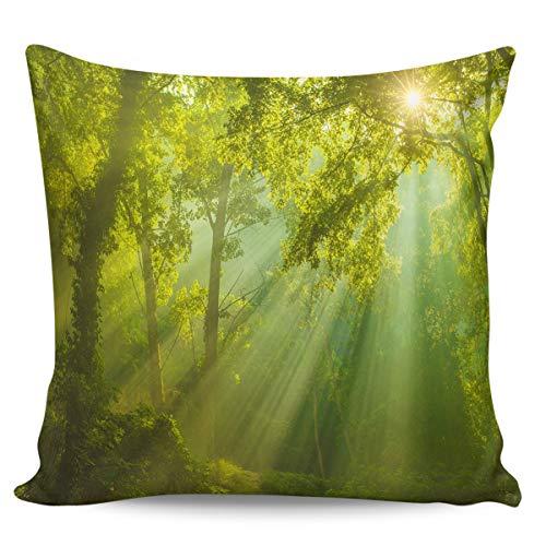 Fundas de almohada de 40,64 x 40,64 cm, diseño de bosque de ensueño, verde brillante, plantas brillantes, rayos de sol, fundas de cojín cuadradas para decoración del hogar