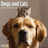 Bright Day Calendars 2021犬と猫の壁カレンダー、12 x 12インチ、かわいい犬の子犬猫の子猫