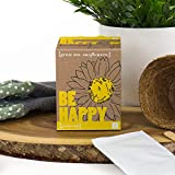 The Gift Experience Grow Me: Be Happy Sunflower Kit