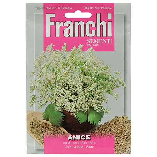 Seeds of Italy Franchi Graines d'anis