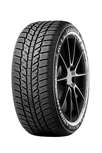 Evergreen–ew62M + S 205/60r1696h Invierno Neumáticos