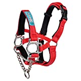 Big Dog Styles Head Collar (2, Red)