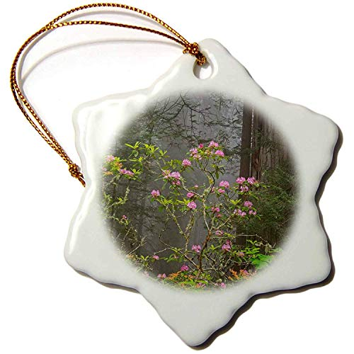Leop345old Trees - California, Del Norte Coast Redwoods, rhododendrons and redwoods - 3 inch Snowflake Porcelain Ornament 9