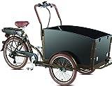 Elektro - Transportrad Voozer braun-schwarz gratis Winterset, Fahrfertig montiert