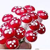 盛世汇众 50pcs Mini Seta roja del Ornamento del jardín en Miniatura Macetas Hada de Bricolaje Dollhouse Paisaje Bonsai de Plantas de jardinería Decoración estacas (Color : Rojo)