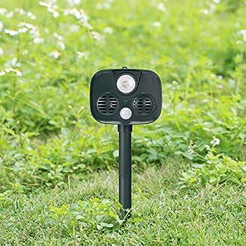 SADFGH Chat ultrasonique de scarificateur Animal répulsif de Chat Solaire avec IP4 imperméable, fréquence de HyperResonance, enjeu moulu pour la Cour/pelouse/Jardin/Ferme,Green