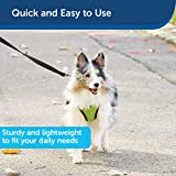 PetSafe Nylon Dog Leash - Strong, Durable, Traditional Style Leash with Easy to Use Bolt Snap - 1