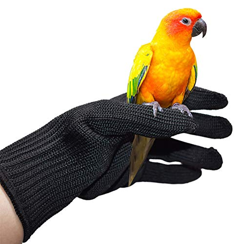 QBLEEV Bird Training Anti-Bite Gloves, Small Animal Handling...