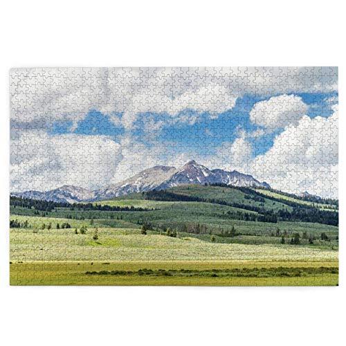 Rompecabezas de 1000 piezas Yellowstone Parque Nacional Paisaje Familiar Grande Puzzle Juego Arte para Adultos Adolescentes
