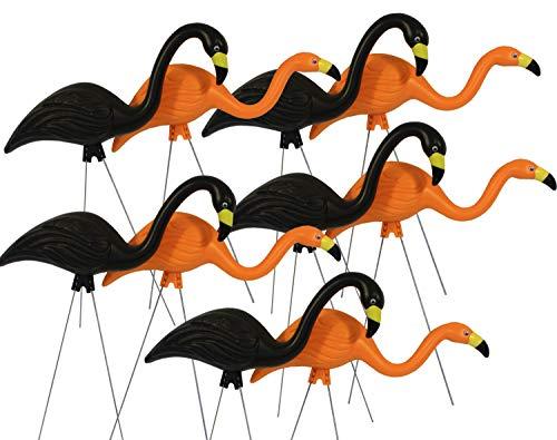 Bloem Spooky Halloween Flamingo Party Yard Stakes (DOTCOMG8-10BK), Orange Black, 10-Pack, 25', 10 Pack