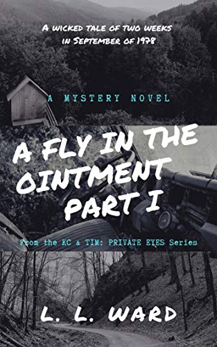 A Fly in the Ointment: Part I (KC & TIM - PRIVATE EYES) (English Edition)