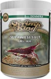 *Dennerle 6151 Shrimp King Sulawesi Salt, 1000 g