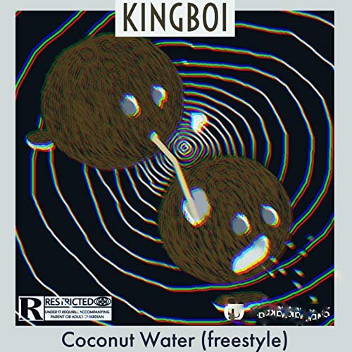 Kingboy & Wolves Records