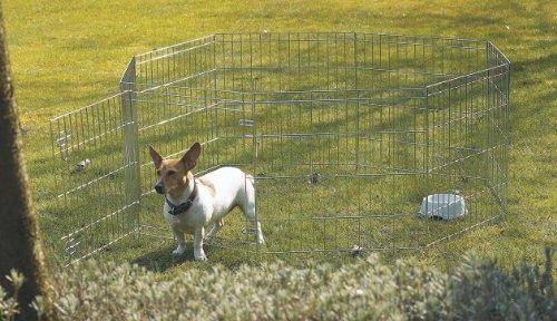 SAVIC Dog Park 2 - Bolígrafo de Juego Octogonal (61 x 91 cm)