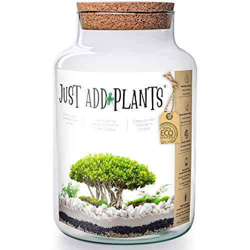 Annastore XXL Pflanzenterrarium inklusive allem - Nur noch Pflanze dazu - Fertig H 30 cm/H 18 / oder H 20- Pflanzenglas - Flaschengarten (H 30 cm Ø 19 cm + Korken)