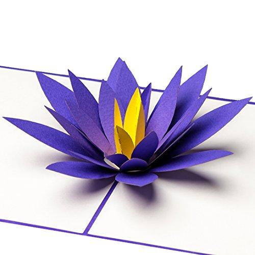 PrimePopUp   Lotusblüte   3D Pop Up Grußkarte   Gute Besserung Karte   Viel Glück   Alles Gute   Gesundheit   Erfolg   Geburtstagskarte für Geldgeschenk oder als Gutschein