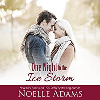 One Night in the Ice Storm cover art