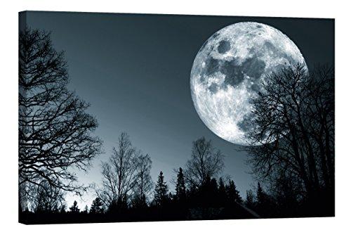 Startoshop Wallart Deko-Bild nachleuchtend Leinwandbild Mond im Wald Wohnzimmerdeko Wandbild fluoreszierend