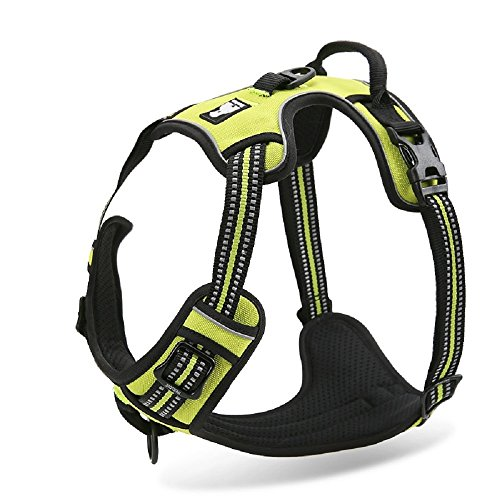Chai's Choice Best Outdoor Adventure Dog Harness. 3M Reflective Vest with Two Leash Attachments. Caution - Please Measure Dog Before Ordering! Matching Leash and Collar Available (Medium, Lemon Lime)