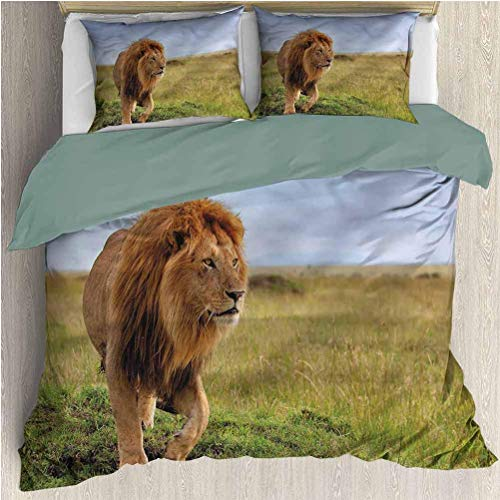 Lion Three-Piece Bed Duvet Cover Animal on Masai Mara Kenya 3 Pieces Printed Sheets Bed Coverlet Duvet Cover Set with 2 Pillow Cases King Size