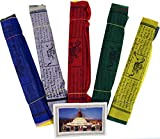 Guru-Shop 5 Banderas de Oración Sparpack (Tibet) con 25 Banderines de Diferentes Longitudes, Viscosa, Longitud: 4,50 m de Largo (banderín 17x14 Cm), Objetos Rituales de Decoración Budista