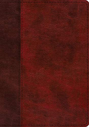 ESV Study Bible (TruTone, Burgundy/Red, Timeless Design, Indexed)