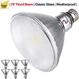 Explux Classic Full Glass LED PAR38 Flood Light Bulbs, Dimmable, 120W Equivalent, Indoor/Outdoor, 2700K Soft White, 6-Pack