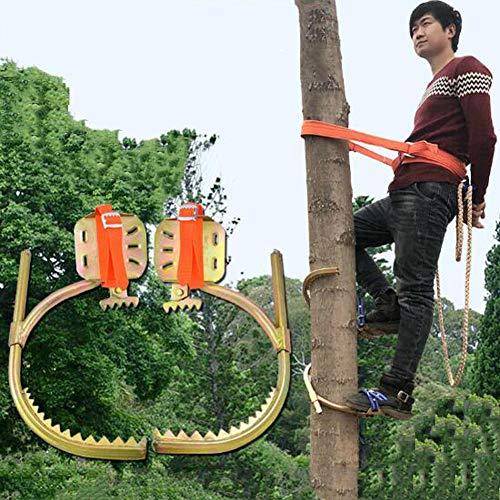 ANJING Herramientas para trepar a los árboles, Hebillas