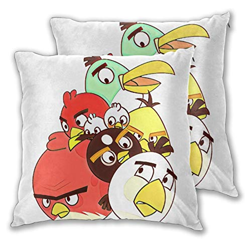 Obbligato Throw Pillow Covers an-Gry Birds Modern Square Pillowcases Cushion Cases for Sofa Couch Bedroom Chair 22'x22'