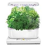 Das ganze Jahr über Gärtnern. Mit diesem intelligenten Gartenset können Sie frische Kräuter, Salate, frisches Gemüse und vieles mehr anpflanzen. Züchten Sie bis zu 6 Pflanzen gleichzeitig. Die Pflanzen wachsen in wa-sser... Nicht in der Erde. Fortsch...