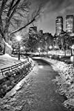 New York City Central Park Wintery Path BW Photo Photograph Cool Wall Decor Art Print Poster 24x36