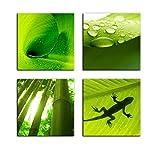 Bilderdepot24 Wandbild - Set Pflanzen - je 20x20cm -