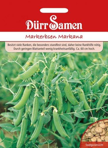 Erbsen - MarkErbsen - Markana von Dürr-Samen
