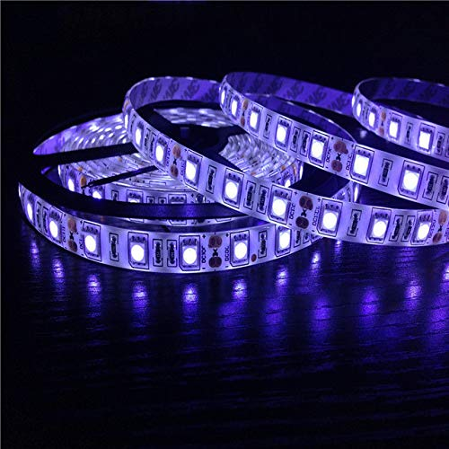 Tiras de luces LED 5050 SMD 60Leds / M Cinta LED flexible impermeable 12v 2835 Cinta decorativa Luz LED Rayas LED RGB + controlador de 24 teclas