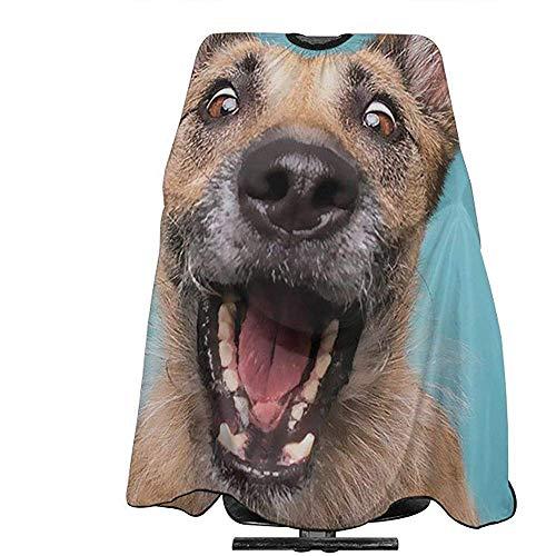 Pag Crane Schäferhund Hundepflege Schürze Friseur Kleid Haarfarbe Abdeckung Für Salon Heimgebrauch Für Styling Design Friseur