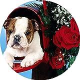 Simpatica idea regalo per tappetino per mouse rotondo con cucciolo di San Valentino