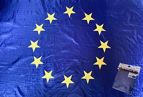 PG Intertrade Europa-Fahne mit Sehr guter Qualität, Wetterfeste Flagge 90cm x 150cm