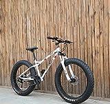 AISHFP Fat Tire Mens Mountain Bike, Double Disc Brake/Cruiser Bikes, Beach Snowmobile Bicycle, 26...
