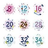 shangjunol 14 Hojas/Sistema del Mes del bebé recién Nacido Milestone Etiqueta Mujeres Embarazadas Vientre fotografía mensual Pegatinas Semanas apoyos de la Foto Picture