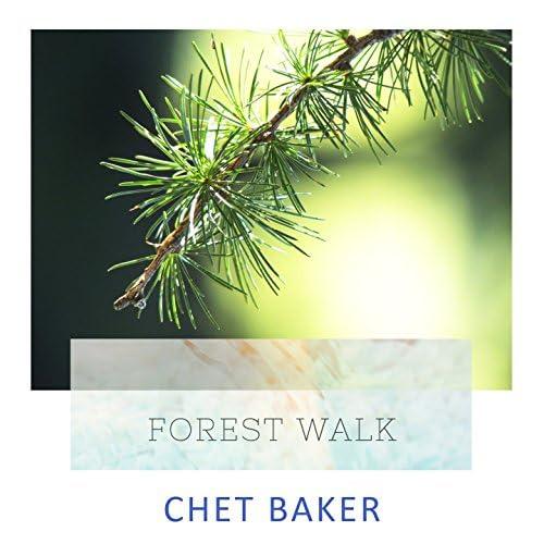 Chet Baker, Chet Baker And Strings