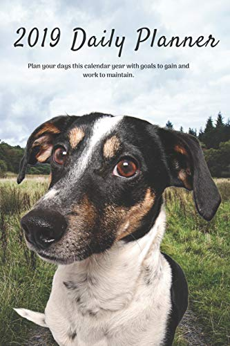 2019 Daily Planner Plan your days this calendar year with goals to gain and work to maintain.: Cute Rat Terrier Dog Appointment Book for Hourly, ... Notes & To-Do List: 6 x 9 in (15.2 x 22 cm)