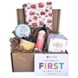 Ecocentric Mom 1st Trimester Organic Pregnancy Gift Box