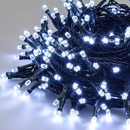 LuminalPark Catena 21,5 m, 300 Diamanti LED Bianco Freddo, con Memory Controller, Cavo Verde, 31V, Esterno