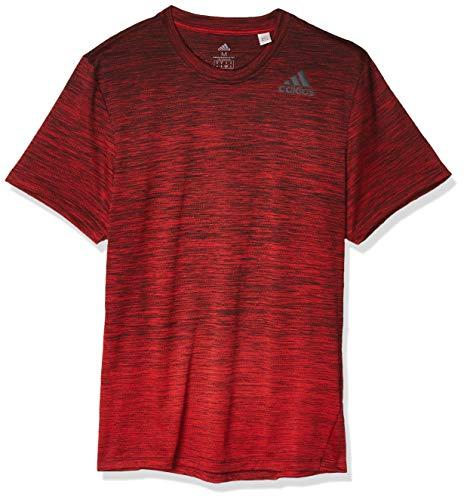 adidas Herren Gradient Tee T-Shirt, Escjas, XL