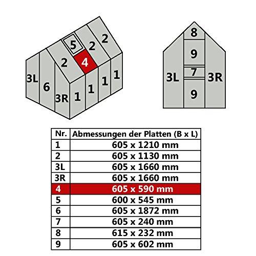 Jawoll Hohlkammerplatte für Gewächshaus Gartenhaus Treibhaus (Nr. 4 (605 x 590 mm))