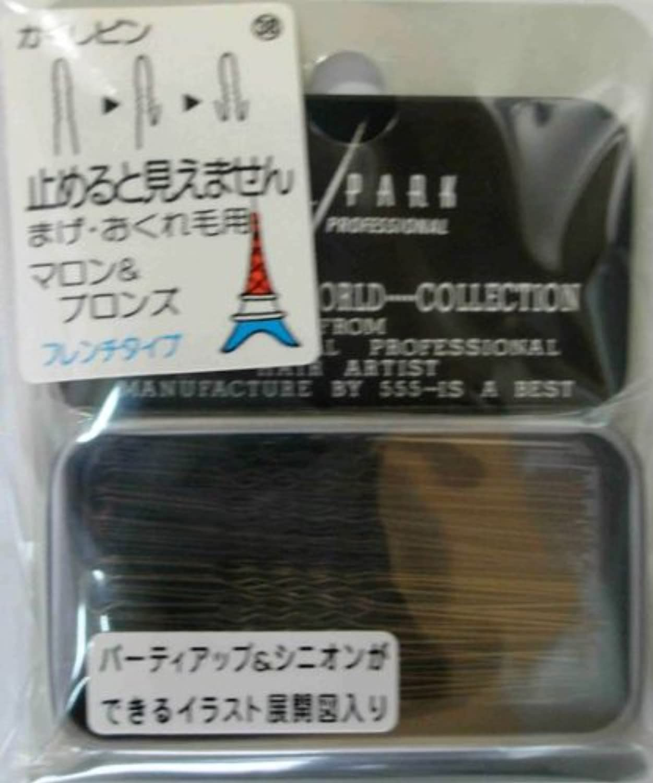 Y.S.PARK世界のヘアピンコレクションNo.38(まげ?おくれ毛用)フレンチタイプ14g