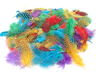 130+ Coloured Feathers Spots - Crafts Collage Hats Costume Millinery Fly Fishing by a2bsales