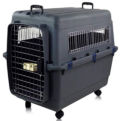 Pet Air Box spécifications Plus Choix Pet Fournitures Portable Hors de la boîte de Grands et Moyens Chats et Chiens boîte placée,B,L